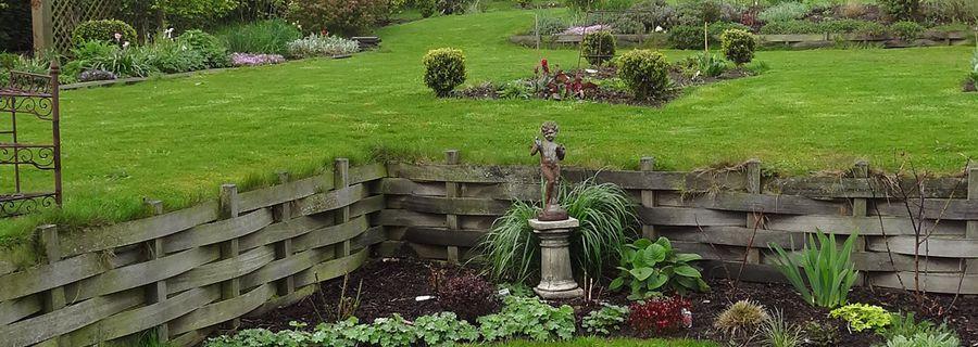 Quelques vues du jardin ce matin