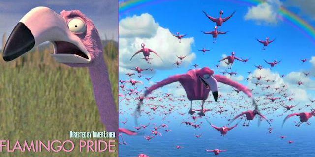 Flamingo pride, un court-métrage d'animation de Tomer Eshed