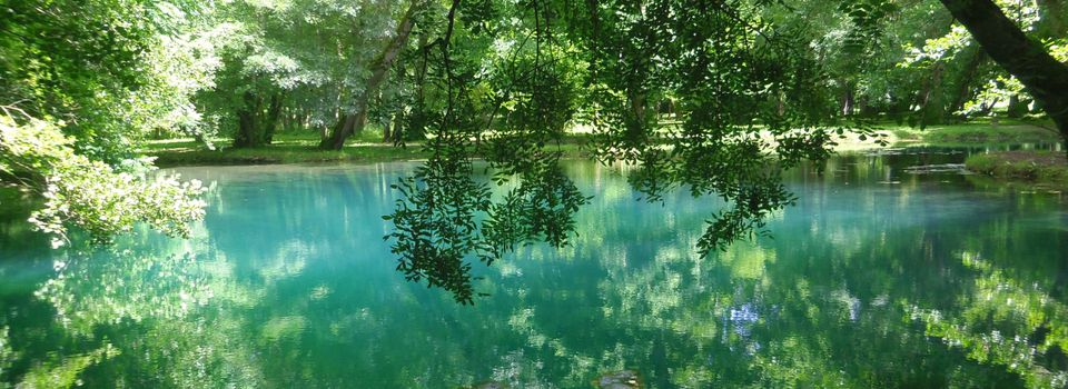 Weekend reflections : blue fountains