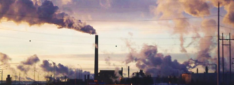 "Climat : le grand bluff des multinationales : le replay de ""Cash Investigation"""
