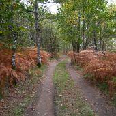 198 bis - Articles les plus vus sur Skreo-dz en octobre 2012... le Périgord Vert, Jumilhac-le-Grand, clin d'oeil en passant... -