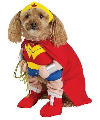 Dog Halloween Costumes: Spooky Pet's Fashion