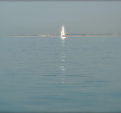 Naviguer avec Ervin Laszlo
