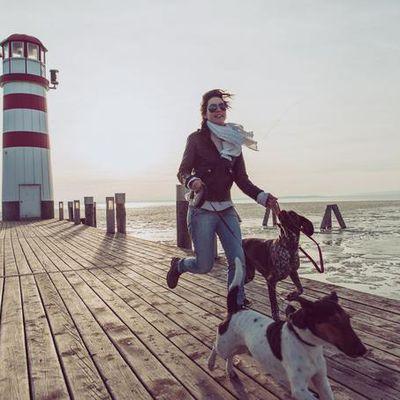 La santé grâce à son chien