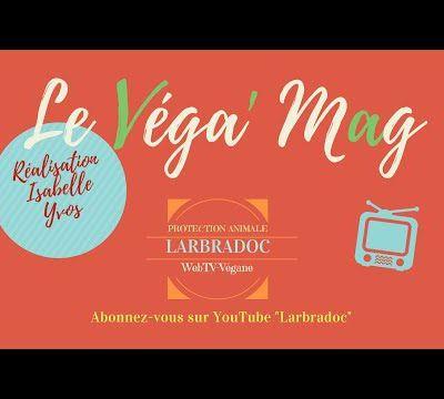 Véga' Mag un nouveau magazine Youtube 100% vegan d'Isabelle Yvos