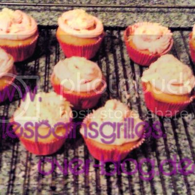 Himbeer Vanille Cupcakes