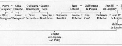 Les réseaux de parenté - 6 (Robellot)