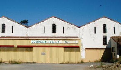 """COURSAN (Aude) cave coopérative """"La Vinicole"""""""