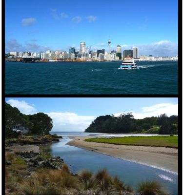 Auckland ... soon the rugby world cup