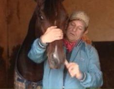 Santé équine : Chouchoutez votre cheval avec l'Aloe Vera