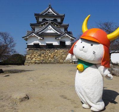 Hikonyan, chat Samouraï et star au Japon !
