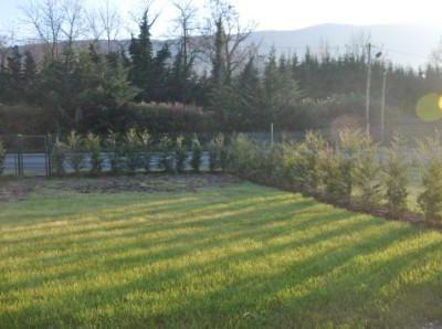 Design Jardin : Aménager un espace jardin en longueur