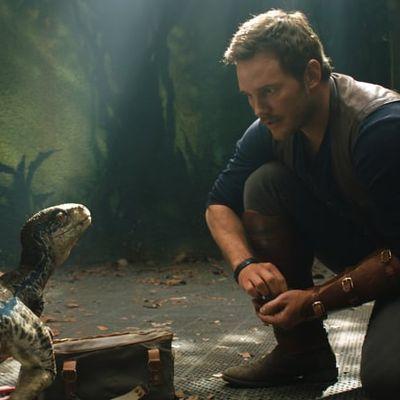 [4K]-Ver! Jurassic World 2: El reino caído (2018) Pelicula Online Completa Gratis