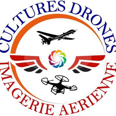Telepilote cultures drones