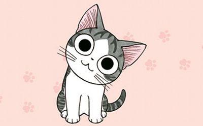 Manga: Chi, une vie de chat