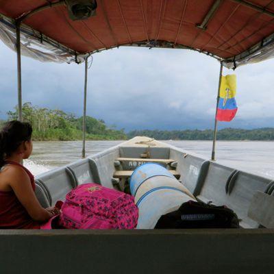 Du rio Napo au fleuve Amazone
