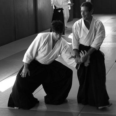 Aïkido et Développement
