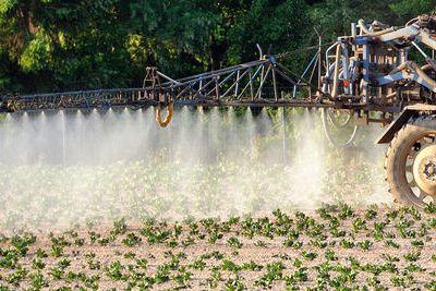 Des enfants exposés à des centaines de résidus pesticides