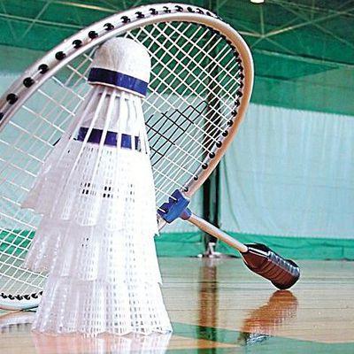 Pleine-fougères badminton