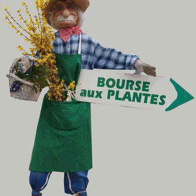 La SABLINE:Association des Amis des Plantes du Pays de Buch