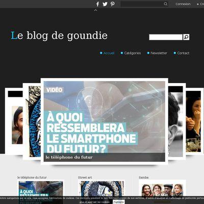 Le blog de goundie