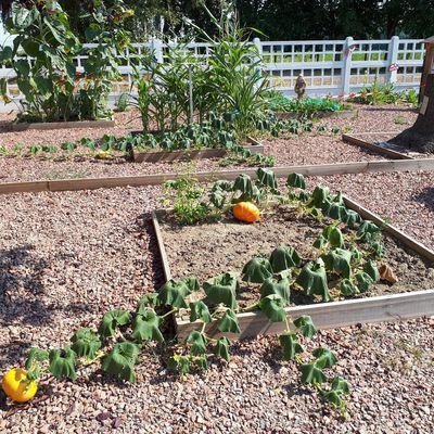 Le blog de l'école Allende, Sainghin-en-Weppes
