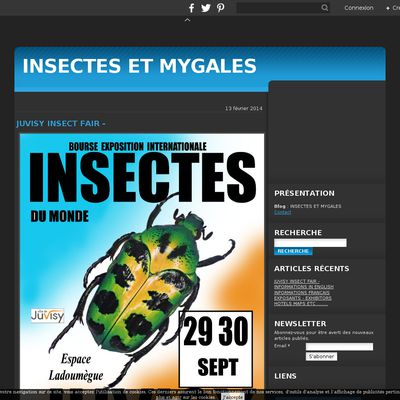 INSECTES ET MYGALES
