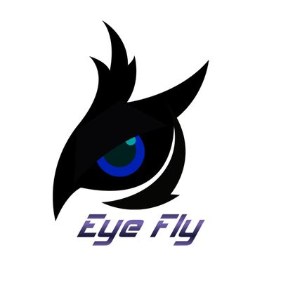 eye.fly.over-blog.com