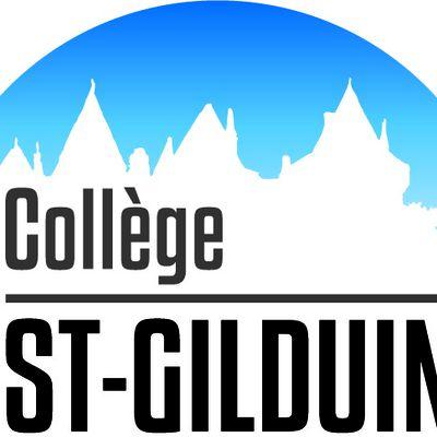 Le blog de la DP3 du college st Gilduin