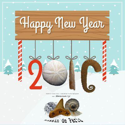 bonne année à tous, ami(e)s caillouteux(ses)