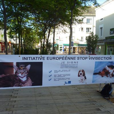 stop.vivisection.over-blog.com