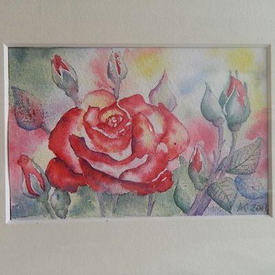 une rose, quelques fleurs