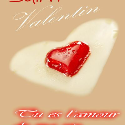 CARTE DE LA SAINT VALENTIN ET MESSAGE