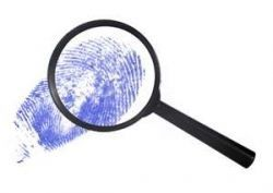 """Writing a detective story: """"Under the Why"""" 4ème F"""