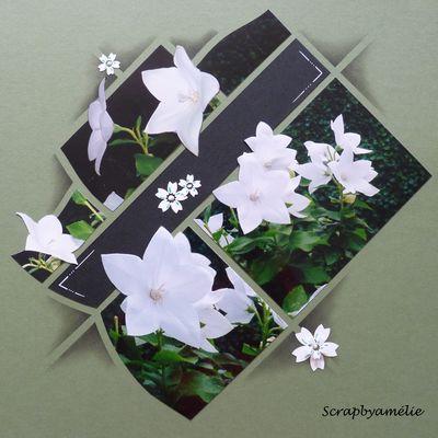 Sur le thème des fleurs...
