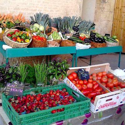 GREN au marché de Châtillon sur Seine !