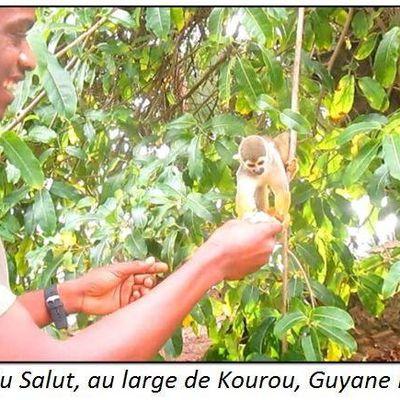 Voyage : mon séjour en Guyane française, de Jouby Alexandre