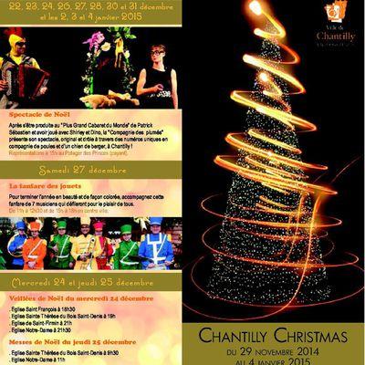 [01-25/12/14] Noël à Chantilly