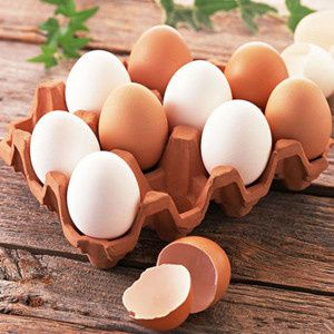 The Process of Egg Production