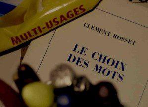 Microsystoles,  le blog d'Emile Gillmo