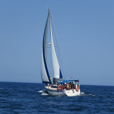 CLUB HENDAYE VOILE   Contact : 06 80 84 56 66   hendayevoile@orange.fr