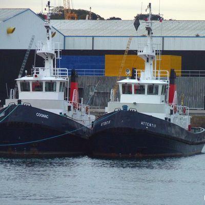 Bateaux du port...