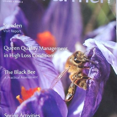 Article sur Bee farmer 04/2015