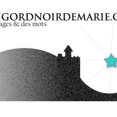perigordnoirdemarie.com