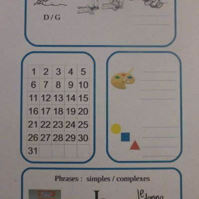 Mon carnet d'observations en maternelle
