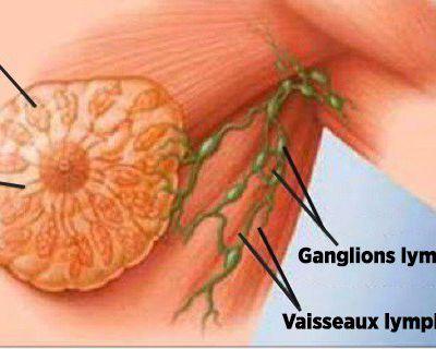 N'en buvez pas, c'est la cause principale du cancer du sein !