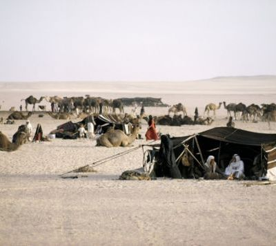 Life in Saudi Arabia – Picnic in the Desert