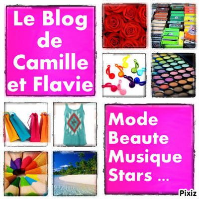 Le Blog de Camille et Flavie