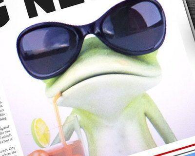 The Frog Traveller