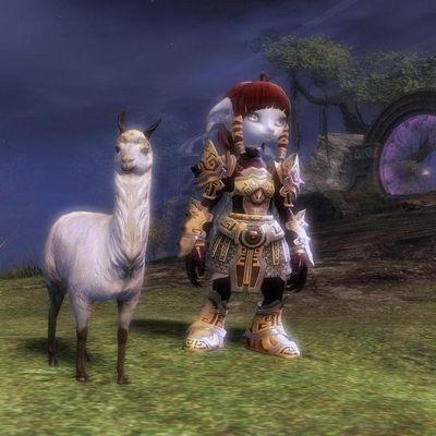 Le Lama Légendaire des Hauteurs du Col Aride